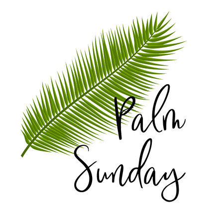 Illustration for Green Palm leafs vector icon. Vector illustration for the Christian holiday. Palm Sunday text handwritten font. For postcards, design, , prints, decoration, label, , template - Royalty Free Image