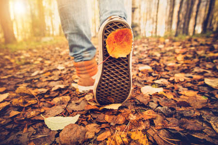 Photo for Feet sneakers walking on fall leaves Outdoor with Autumn season nature on background Lifestyle Fashion trendy style - Royalty Free Image