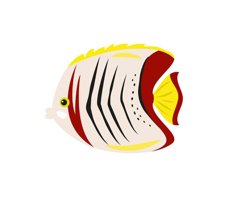 Tropical butterfly fish on white background. Vector illustration.