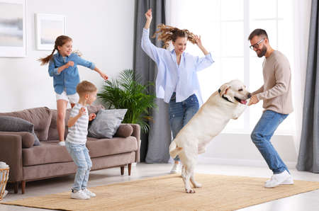 Photo pour Full body of happy playful family: parents and little kids with cute purebred Labrador retriever dog having fun and dancing together in living room at home - image libre de droit