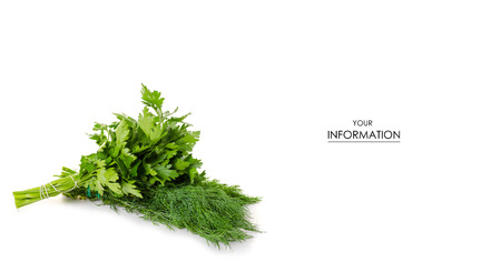 A bunch of parsley and dill pattern on white background isolation