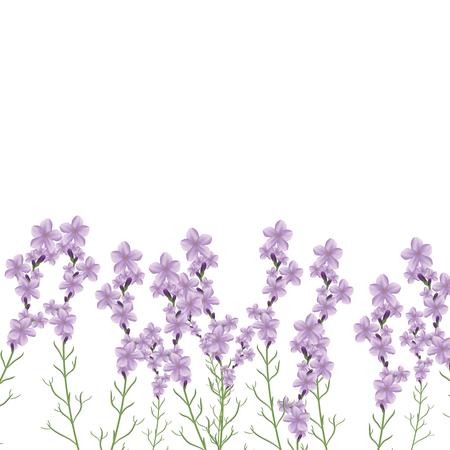 Realistic lavender flower vector illustration