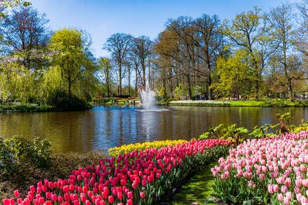 Photo pour Keukenhof park in Netherlands - image libre de droit