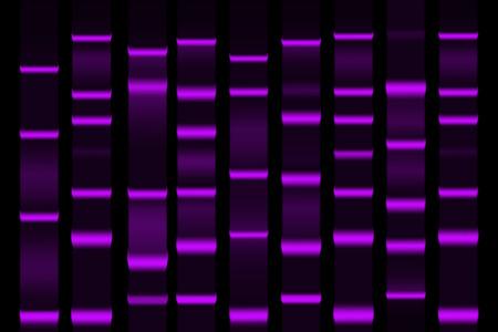 Vektor für Gel electrophoresis separation electrophoretogram result vector illustration - Lizenzfreies Bild