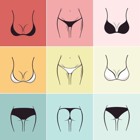 Set of sketch bra and panties Vector. Beautiful elements of womens underwear