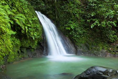 Waterfall in the National Park of Guadeloupe