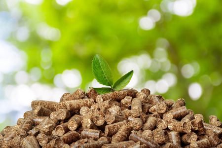 Wood pellets on a green background. Biofuels.