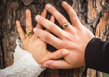 Photo pour Bride and grooms hands with engagement ring - image libre de droit