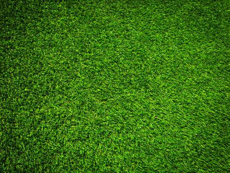 Photo pour Nature green grass texture background for design. Eco concept. - image libre de droit