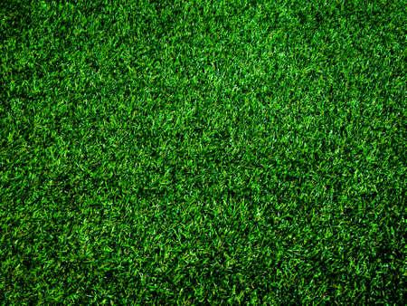 Foto de Top view of green grass texture background. Element of design. - Imagen libre de derechos