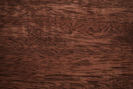 Photo pour Wood scratched texture background High quality for work look better and attractive. copy space for your design or decoration. Horizontal composition with Surface patterns from natural - image libre de droit