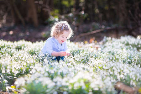 Cute curly toddler girl playing with first spring flowers in a beautiful spring sunny park