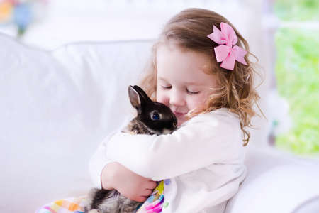 Child playing with a real rabbit. Kids play with pets. Little girl holding bunny. Children and animals at home or preschool. Cute curly toddler kid hugs her pet animal. Preschooler feeding rabbits.
