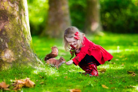 Foto de Girl feeding squirrel in autumn park. Little girl in red trench coat and rain boots watching wild animal in fall forest with golden oak and maple leaves. Children play outdoors. Kids playing with pets - Imagen libre de derechos