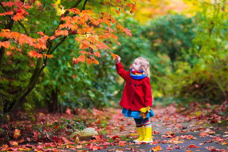 Foto per Little girl with yellow leaf. Child playing with autumn golden leaves. Kids play outdoors in the park. Children hiking in fall forest. Toddler kid under a maple tree on a sunny October day. - Immagine Royalty Free