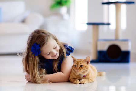 Photo pour Child playing with cat at home. Kids and pets. Little girl feeding and petting cute ginger color cat. Cats tree and scratcher in living room interior. Children play and feed kitten. Home animals. - image libre de droit