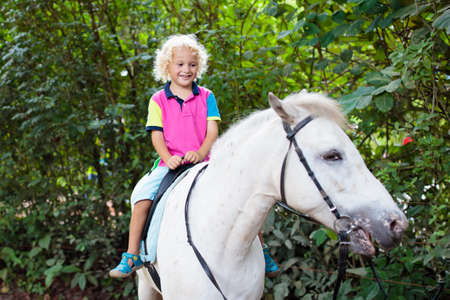 Photo for Little boy riding horse on summer vacation in country ranch. Kids learn to ride horses. Children and animals friendship. Little child on white pony. Kid playing cowboy. Young jockey. - Royalty Free Image