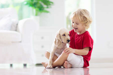 Photo pour Child playing with baby dog. Kids play with puppy. Little boy and American cocker spaniel at couch at home. Children and pets at home. Kid sitting on the floor with pet. Animal care. - image libre de droit