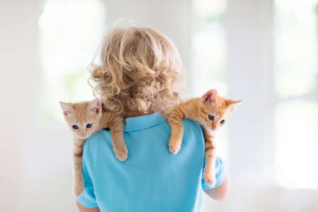 Photo pour Child holding baby cat. Kids and pets. Little boy hugging cute little kitten at home. Domestic animal in family with kids. Children with pet animals. - image libre de droit