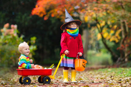 Photo pour Kids trick or treat on Halloween night. Little girl with pumpkin face candy bucket. Child trick or treating. Kid in scary witch costume with sweets bag. - image libre de droit