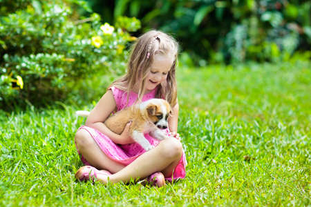 Photo for Kids play with cute little puppy. Children and baby dogs playing in sunny summer garden. Little girl holding puppies. Child with pet dog. Family and pets on park lawn. Kid and animals friendship. - Royalty Free Image