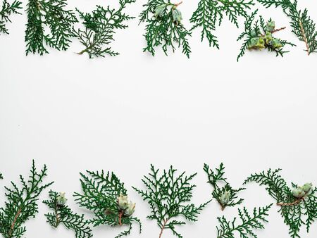 Photo pour Minimal Christmas pattern with copy space. Fir tree or cypress branches on white background. Negative space for text or design in center. Christmas, winter, new year concept. Flat lay, top view - image libre de droit