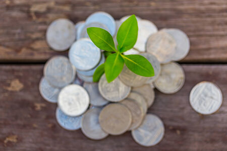 Money growth Deposit your budget for investment in the future