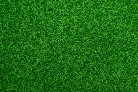 Foto de Green artificial grass natural - Imagen libre de derechos