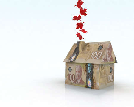 canadian dollar house, 3d illustration
