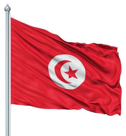 Realistic 3d flag of Tunisia fluttering in the wind