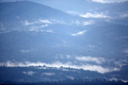 Feathercollector170500013