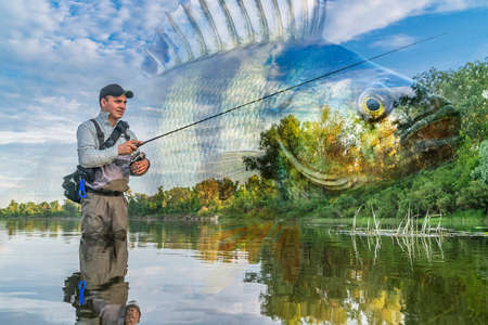 Photo pour Perch fishing. Photo collage of angler in river water on soft focus perch fish background. - image libre de droit