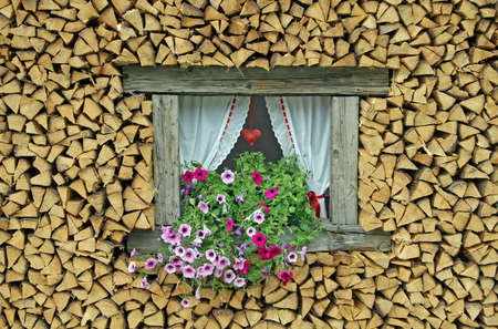 ledge of a window surrounded by flowers freshly cut wood