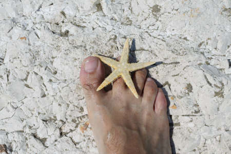 big foot barefoot of a young man and starfish on white rocks in summer