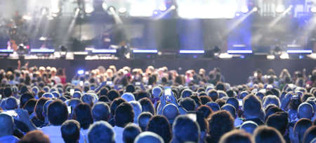 assists crowd standing at the concert of a famous singer