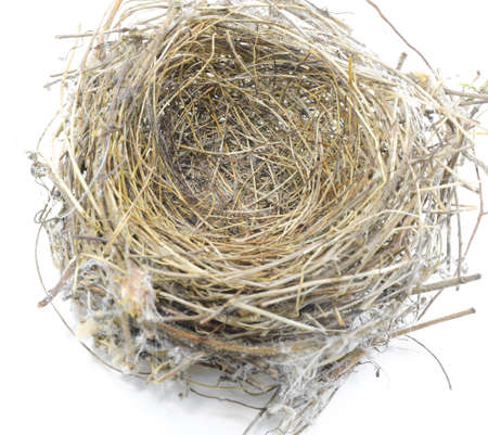 Photo pour small bird nest made with straw and twigs twisted together on a white background - image libre de droit