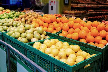 Shelf with citrus fruits in large food supermarket, toned image