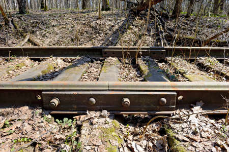 Rusty rails of the abandoned railroad in the forest. Perspective view.