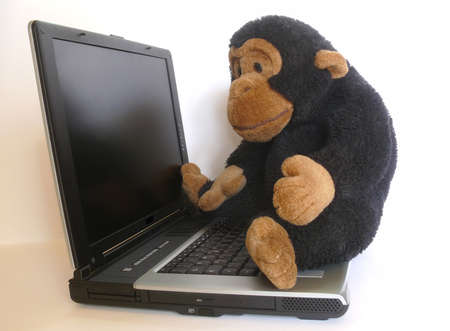 Lovable monkey sitting on a computer