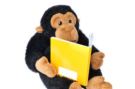 Close-up of a  stuffed monkey reading a book