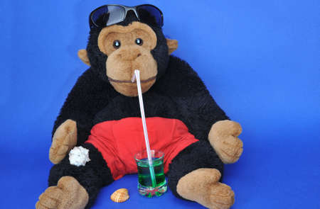 Beach time: fluffy monkey with sunglasses sipping drink