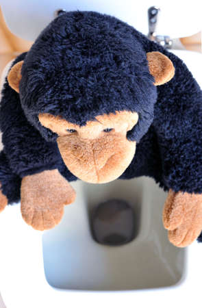 Abstract: a monkey toy sitting on the toilet
