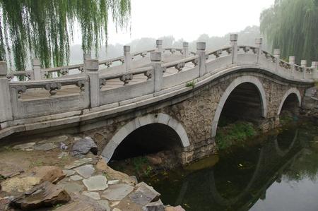 Feiyuwzhangjie121000108