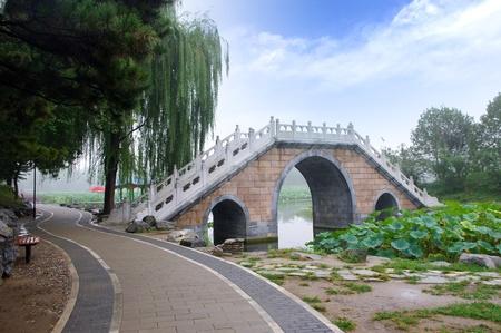 Feiyuwzhangjie121000111