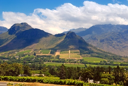 Rural landscape with mountains, fields and vineyard, Capetown province (South Africa)