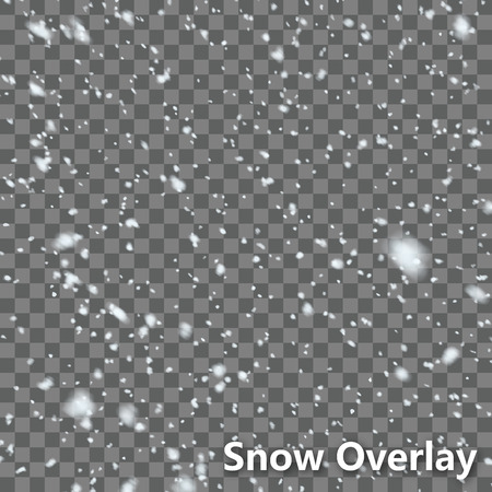 Isolated Falling Snow Overlay  EPS10 Vectorのイラスト素材