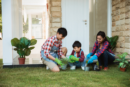 Foto de family and kid water spray a young plant in the pot at home - Imagen libre de derechos