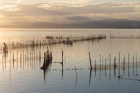 Photo for Sunset in the calm waters in the natural park of Albufera, Valencia, Spain. Magical colors in natural background - Royalty Free Image