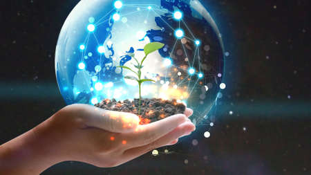 Foto de Hand holding globe with green plant growing . Environmentally friendly concept - Imagen libre de derechos