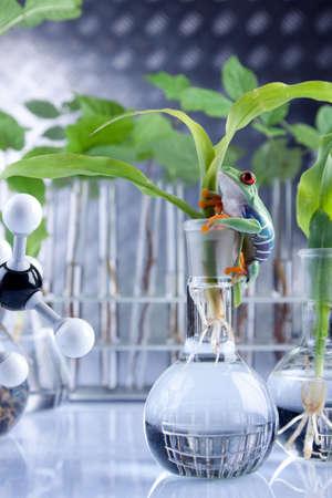 Laboratory and plants